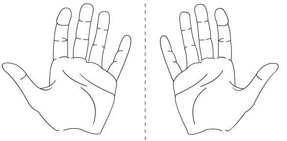 Les mains sont des énantiomères